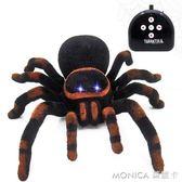 紅外線惡搞遙控黑寡婦蜘蛛電動爬行狼蛛模擬嚇人創意整人整蠱玩具 美斯特精品