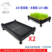 A01芽菜箱、水耕箱、家庭式多用途芽菜培育箱(2入/組)