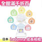 Ladonna 摩天輪造型嬰兒成長相框 RM06 週歲成長紀錄 彌月禮 小寶寶 日本【小福部屋】