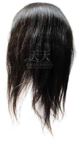 【美髮乙級.丙級考試】七股 神奇頭皮 16吋 百分百真髮 [12816]乙級.丙級/考試/練習/教學