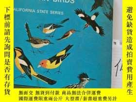 二手書博民逛書店Introducing罕見our western birds西部鳥類介紹Y15335
