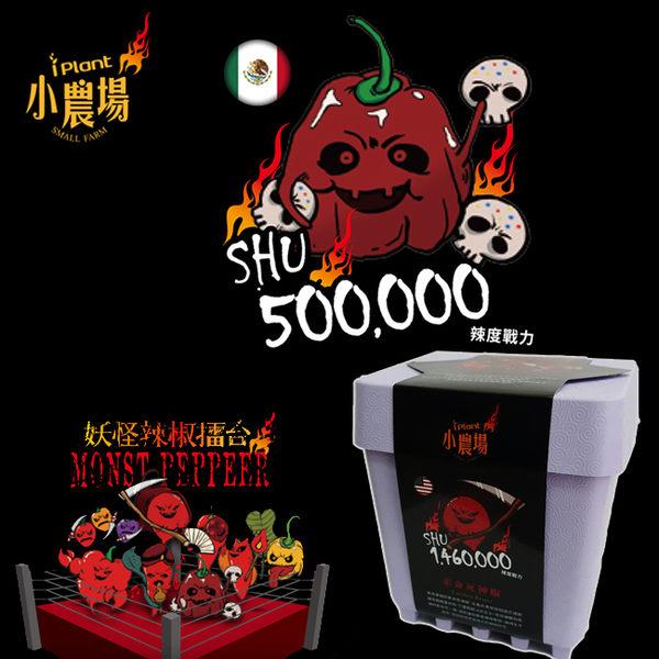 最新iPlant 積木小農場 妖怪辣椒擂台 - 墨西哥亡靈巧克力椒