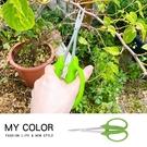 園藝剪刀 剪刀 修枝剪 牙切剪 植栽剪刀 樹枝剪刀 不銹鋼 加長型 植物修枝剪【Q169】MYCOLOR