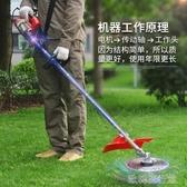 【快出】電動割草機220伏背式多功能插電式小型家用草坪修剪機除草機剪草YYP