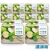 清淨海 巧檸酸-食品等級檸檬酸 350g SM-SHH-CA0350x12入