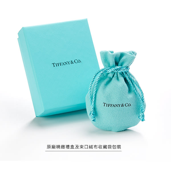 TIFFANY&Co. 1837永恆之環純銀手鍊