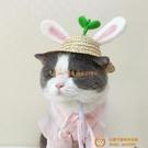 韓版可愛寵物帽子草帽夏天羊毛氈太陽帽貓咪拍照帽子外出用【小獅子】