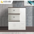 ASSARI-防潮防蛀塑鋼緩衝二拖盤電器櫃(寬97x深43x高124cm)