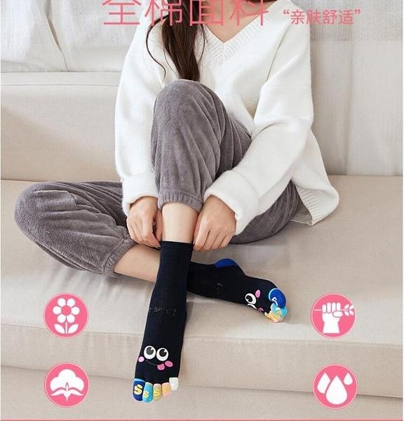 藍姿欣禮盒五指襪女士純棉春夏天短筒中隱形船襪子可愛薄款分腳趾 【年終盛惠】