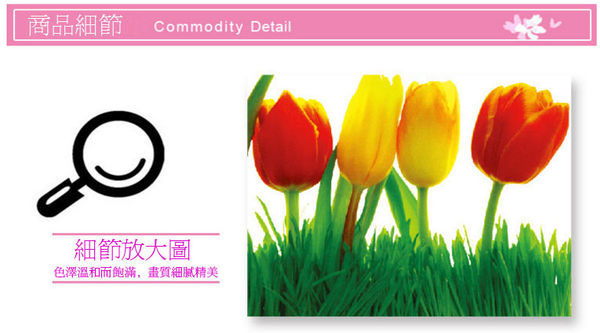 B7121【漂亮鬱金香】進口創意無痕壁貼