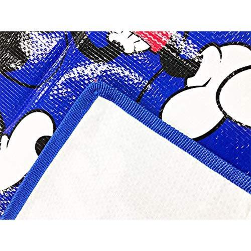 DISNEY 迪士尼米奇滿版圖案野餐墊M(多變米奇)★funbox★丸真_RS66246