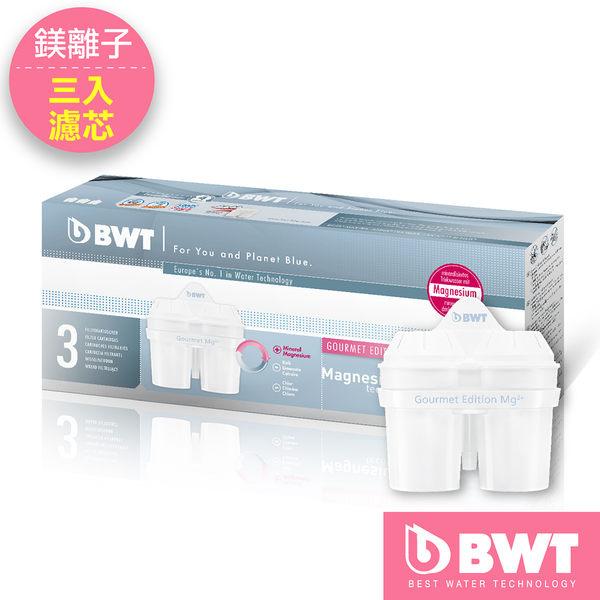 【即期品↘68折】【BWT德國倍世】Mg2+鎂離子8周長效濾芯(三入組)