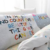 枕頭套枕頭套一對棉質單人情侶韓式卡通棉質枕套成人大號公主風 耶誕交換禮物