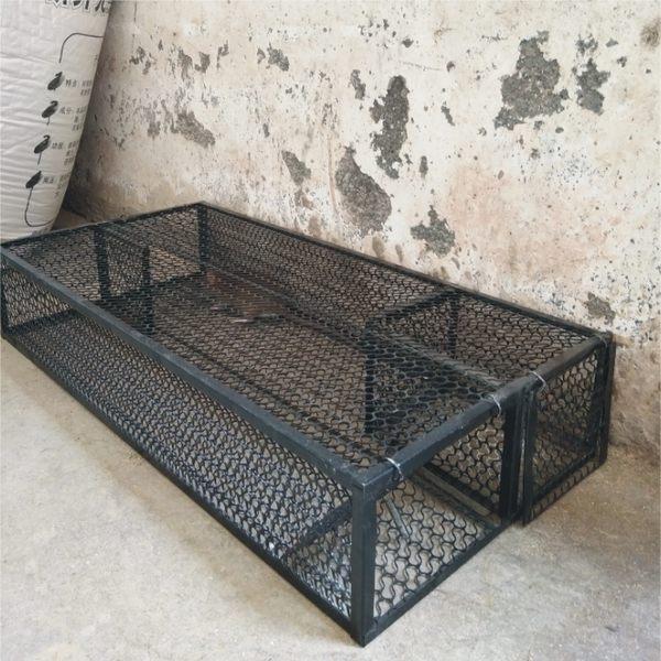 雙門連續自動老鼠夾捕鼠器家用捕鼠籠捕鼠神器抓老鼠籠撲滅鼠神器 igo 可然精品鞋櫃