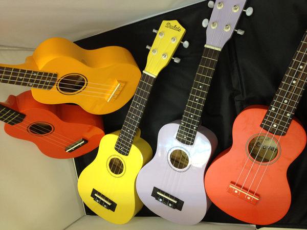 【金聲樂器】全新彩色 烏克麗麗,顏色齊全。附琴袋 指法表 (新手首推)