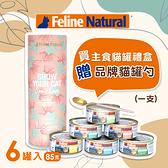 【SofyDOG】K9 Natural 鮮燉主食貓罐頭 85克六口味各一 附好命金湯匙
