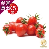 Global Fresh-力信國際 高CP 值、四季水果首選-聖女番茄 450g/盒,5盒/箱【免運直出】