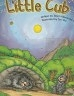 二手書R2YBb《Little Cub Magic Tree Books 5-3