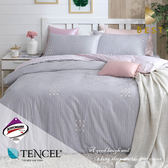 天絲床包兩用被四件組 雙人5x6.2尺 西芙  頂級天絲 3M吸濕排汗專利 床高35cm   BEST寢飾