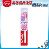 高露潔高密細絲護齦牙刷(1入)