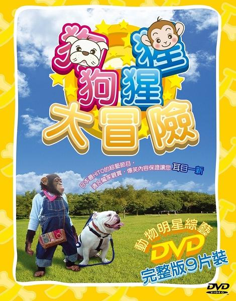 狗狗猩猩大冒險(9片裝)全套完整版 DVD 免運 (購潮8)