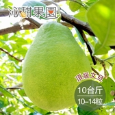 沁甜果園SSN.頂級文旦10-14粒裝/10台斤﹍愛食網