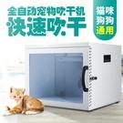 現貨110V寵物烘干機家用商用貓貓吹干機全自動寵物烘干箱