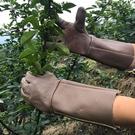 牛皮防刺手套園林園藝扎穿仙人球玫瑰月季修剪摘花椒板栗靈活厚左