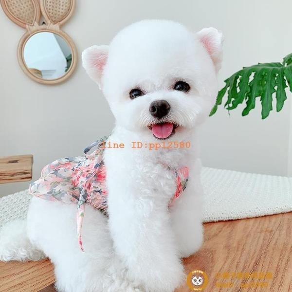 碎花雪紡露臍裝寵物貓咪公主裙博美泰迪比熊衣服薄款小型犬小狗狗【小獅子】