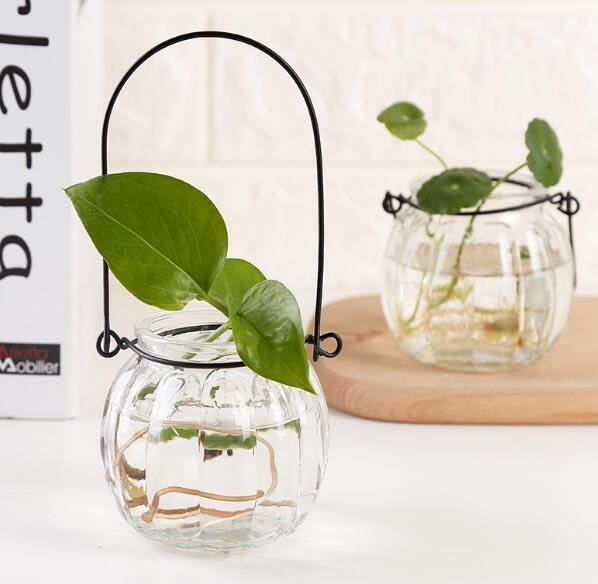 花瓶創意懸掛透明玻璃花瓶簡約花盆室內園藝家居裝飾夏洛特