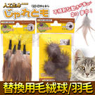 【zoo寵物商城】日本Jaretomo》...