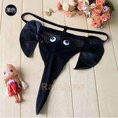 大象內褲(黑色款) 猛男派對驚喜 男友生日禮物 情趣丁字褲 情人節禮物【滿千88折】快速出貨