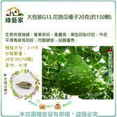 【綠藝家】大包裝G13.花匏瓜種子20克(約150顆)