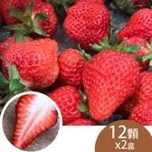 (2盒)天藍果園-大湖草莓(12顆)含運組