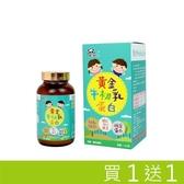 【南紡購物中心】黃金牛初乳蛋白 Panda baby 鑫耀生技 買一送一