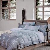 哇哇購 60支頂級天絲 四件式兩用被床包組 雙人 空谷