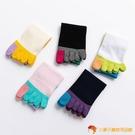 5雙裝 五指襪女棉襪防臭吸汗分腳趾襪子短筒【小獅子】