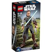 75528【LEGO 樂高積木】星際大戰 Star Wars-芮 Rey