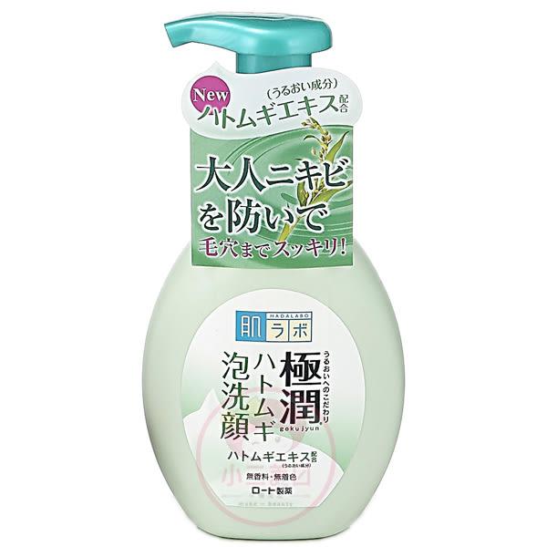 ROHTO肌研 極潤保濕泡洗顏(薏仁)160ml【小三美日】