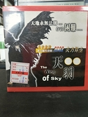 挖寶二手片-0S04-080-正版VCD-布袋戲【天羽 第1-30集 30碟】-(直購價)