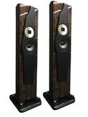 名展影音 Divine Acoustics Proxima3 落地式喇叭/對 新竹桃園推薦
