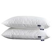 北極絨枕頭單人雙人枕芯一對裝家用枕睡覺專用學生宿舍 【端午節特惠】