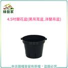 【綠藝家】4.5吋蘭花盆(黑吊耳盆.洋蘭...