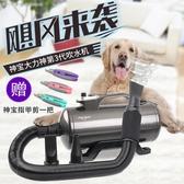 神寶雙馬達寵物店吹水機貓狗大功率烘干拉毛機大型犬吹車用吹風機 220V  LX HOME 新品
