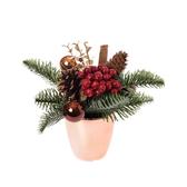 聖誕經典中盆花-古銅金