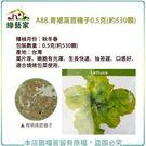 【綠藝家】A88.青裙萵苣種子0.5克(約530顆)