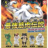 全套5款【正版授權】最強筋肉傳說 扭蛋 轉蛋 健美動物 肌肉動物 夥伴玩具 - 004382