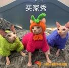 南瓜帽無毛貓配飾卡通帽子寵物搞笑可愛裝飾手工定制【小獅子】