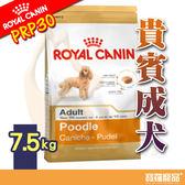 BHN 皇家PRP30貴賓成犬7.5kg【寶羅寵品】