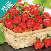 特號草莓1盒(400g±5%/盒)【愛買冷藏】